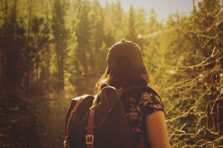 Ein Wanderer in der Natur. Thema: Ausbildung